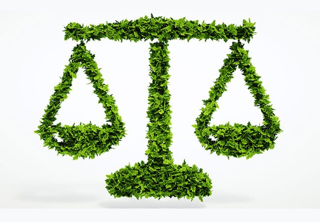 Environmental-Law-Dissertation-Topics